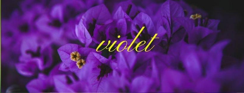 En avril c\'est au tour du violet !